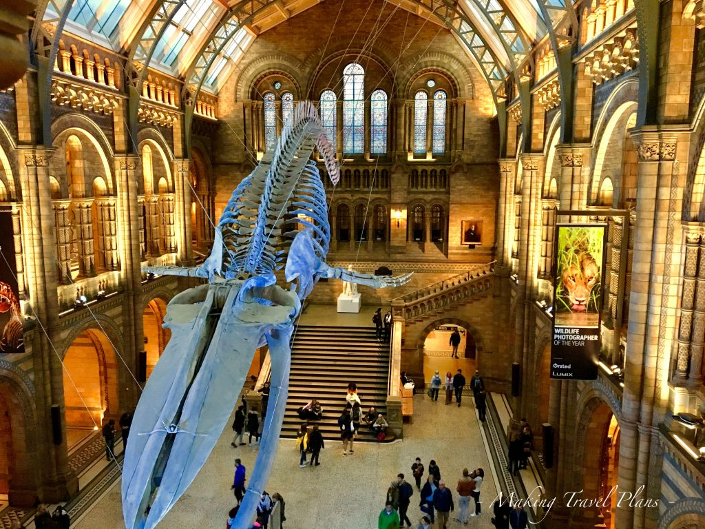 Must do in  Europe Natural History Museum