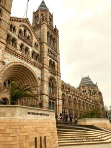 Must do in London Europe. Natural History Museum